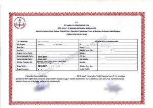 tavan vinci sertifikası, tavan vinci operatörü belgesi, tavan vinci lisansı